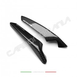 Glossy carbon tail sliders protectors BMW S 1000 RR 2019 2020 (Linea Strauss)