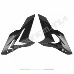 Side panels in carbon fiber BMW S 1000 R 2014 2016 Performance Quality