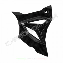 Carbon sprocket cover BMW S 1000 RR 2019 2020 Performance Quality