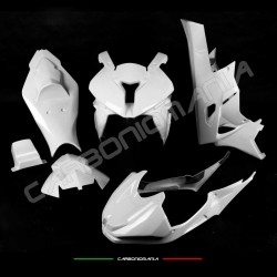 Complete racing fairing in fiberglass fabric BMW S 1000 RR 2009 2014 Performance Quality