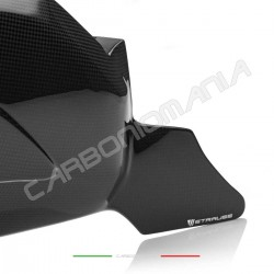 Swingarm cover with matt carbon chain fin Ducati PANIGALE V4 / V4S / V4R (Strauss Line)