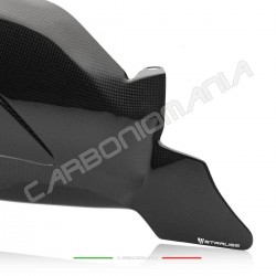 Swingarm cover with matt carbon chain fin Ducati Streetfighter V4 / V4S (Strauss Line)