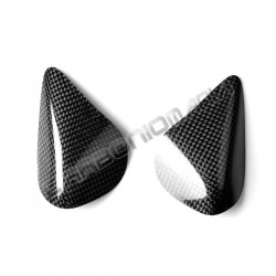 Carbon tank side guards for Ducati 899 1199 1299 PANIGALE