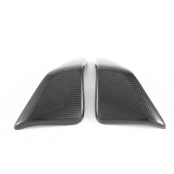 Electric system support fins in carbon Ducati 899/959/1199/1299 / Panigale R (FULLSIX Line)