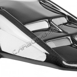 Rear mudguard in carbon fiber Triumph Daytona 675 2006 2012 Performance Quality