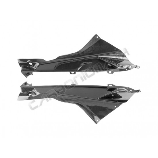 Carbon fiber slide panels with internal lugs for BMW S 1000 RR Performance Quality image