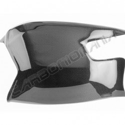 Carbon fiber swingarm cover for Ducati Streetfighter Performance Quality